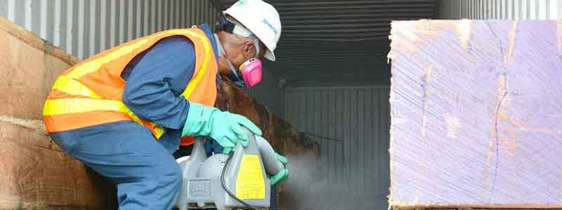 Pest Control Services in Mumbai Central